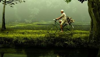 obowiazkowe wyposażenie roweru