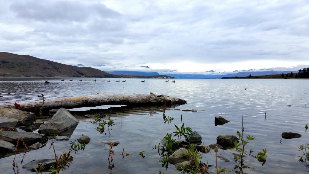 NZ_jezioro