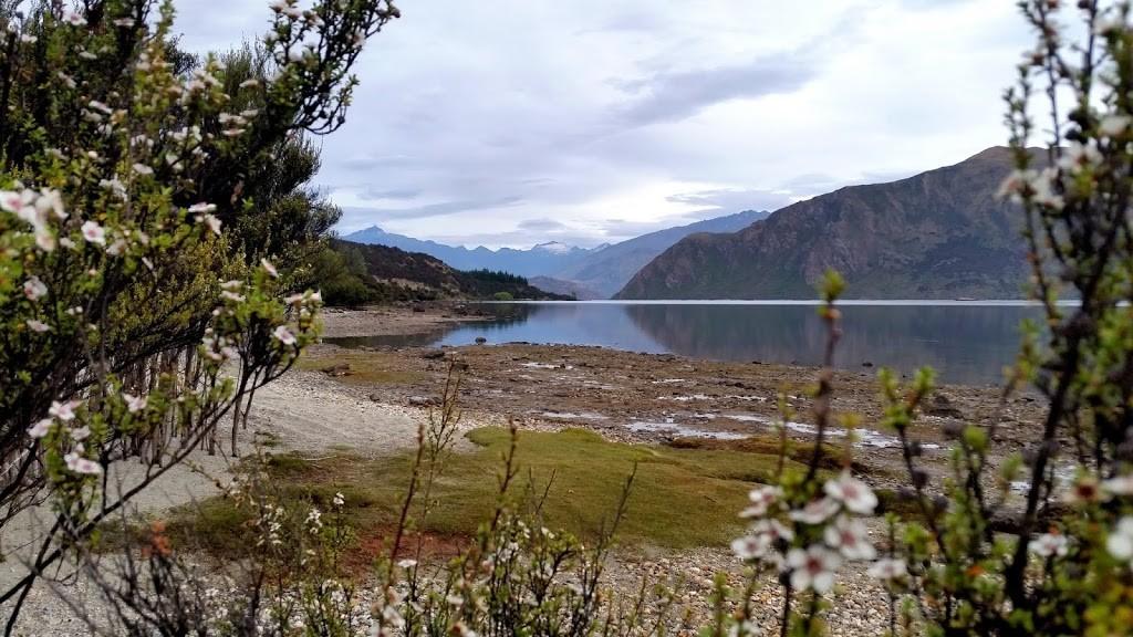 NZ_wanaka