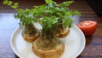 jak wyhodować zioła i szczypiorek w domu
